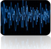 seismic data services
